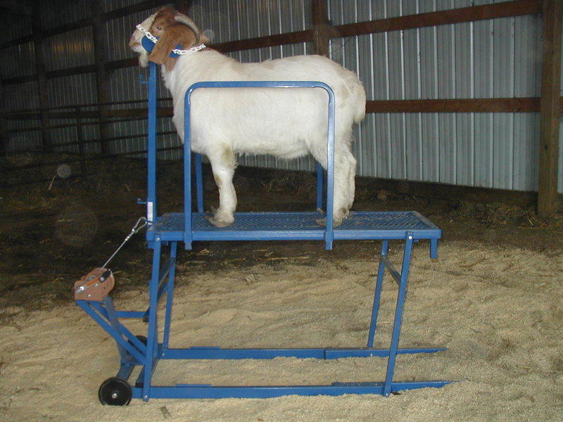 Sydell Sheep Amp Goat Clutch Winch Fitting Stands Three