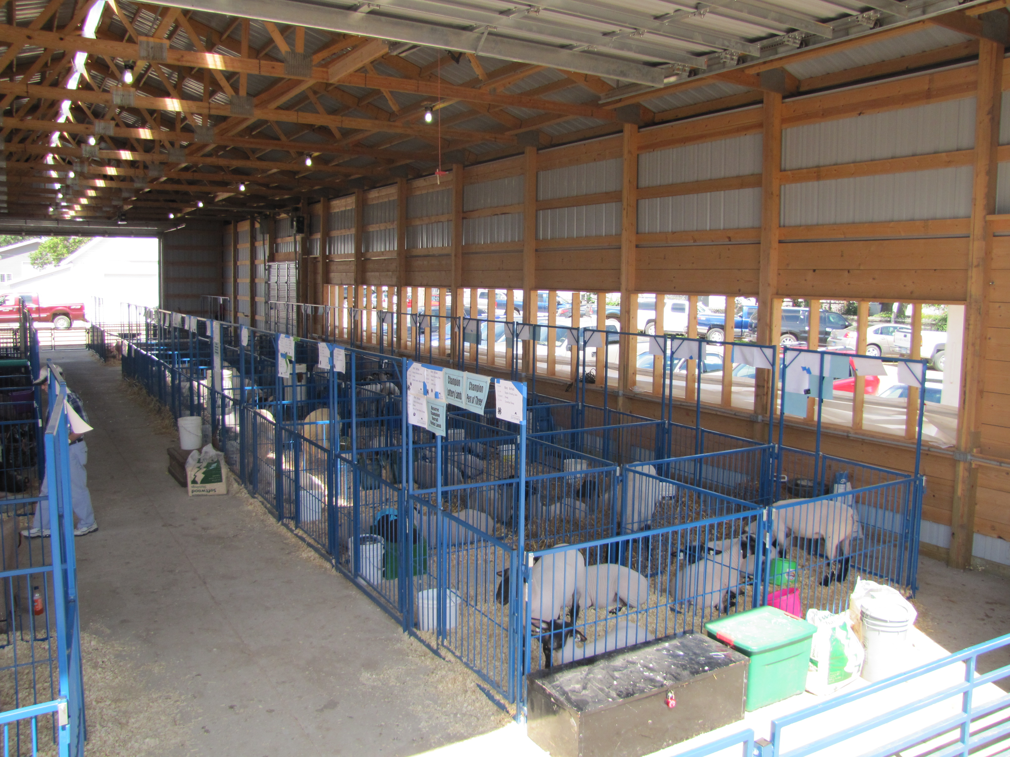 Used Show Pig Pens For Sale