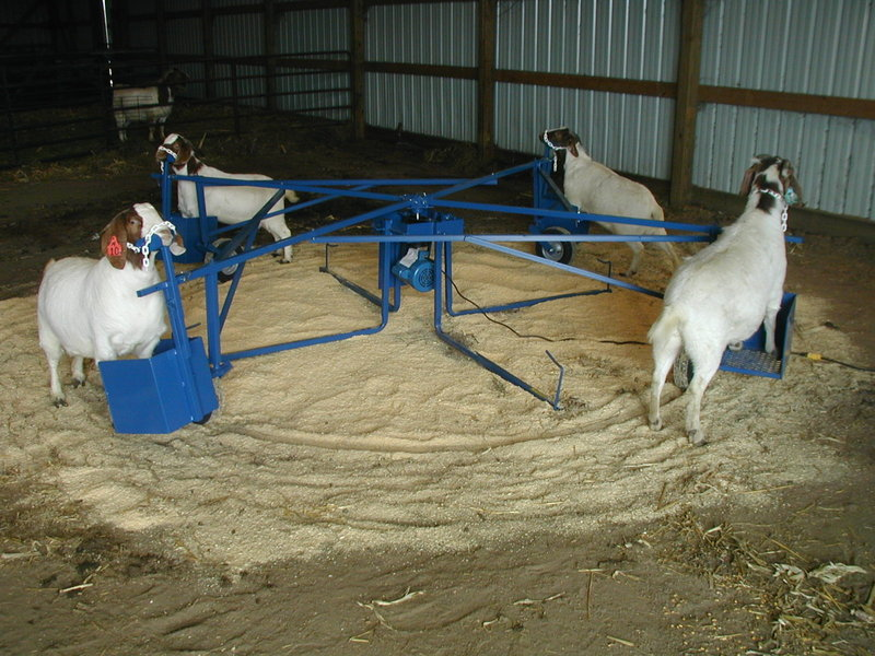 Sheep and Goat Supplies: Feeders, Pens, Corrals, Tilt Tables